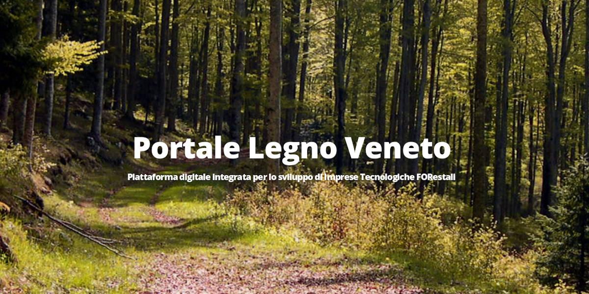"""Webinar di presentazione del """"Portale Legno Veneto"""""""